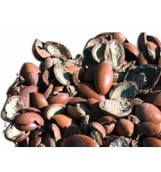 Naravno masažno olje HAMMAM z arganovim oljem (5L)